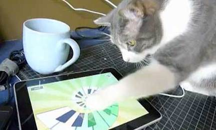 Iggy and iPad
